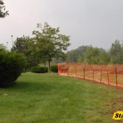 Protecting Existing Trees